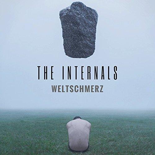 The Internals (Original Mix)