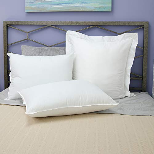 BioPEDIC Antimicrobial Bed Pillow with Built-in Ultra-Fresh Anti-Odor Technology, Jumbo, White 2 Count