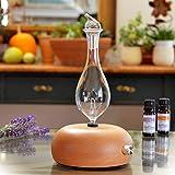 Aromaterapia Nebulizador 100% De Aceites Esenciales Puros Difusor Sin Calor Plásticos De Agua...