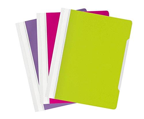 Durable 999110495 Sichthefter (A4 Bicolor, Packung à 10 Schnellhefter) lila, grün und purpur
