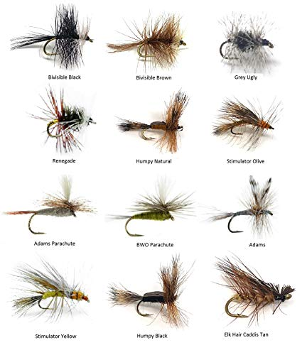 Feeder Creek Fly Fishing Assortment - 48 Flies in 12 Trout Crushing Patterns of Dry Flies (Renegade, BWO, Elk Hair Caddis Tan, Bivisible Brown, Adams Parachute, Humpy and More) Sizes 12-14