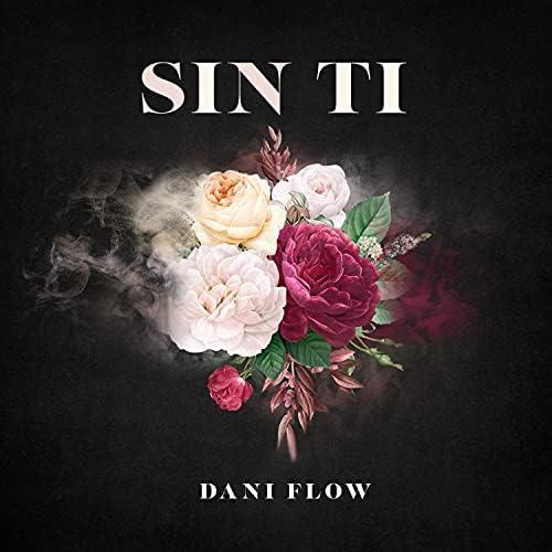 Dani Flow
