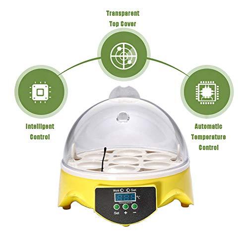 Incubatrice per uova, micro incubatrice semi-automatica per uso domestico per uova di gallina Controllo della temperatura e dell\'umidità Allevamento di pollame Allevamento