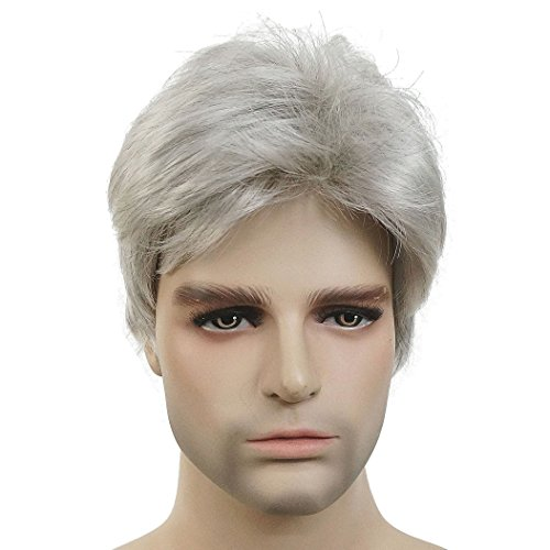Lydell Men Wig Natural Short Straight Hair Synthetic Full Wigs (Silver Grey)