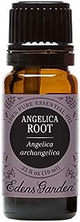 Edens Garden Angelica Root Essential Oil, 100% Pure Therapeutic Grade (Cold Flu & Sleep) 10 ml