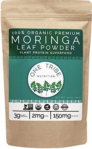 Premium Organic Moringa Powder - Vegan Plant Based Protein - 100% All Natural Raw Superfood Greens - Non-GMO (14 oz)