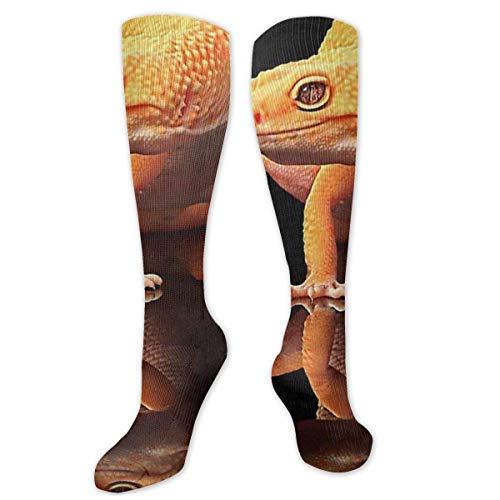 Jessicaie Shop Tiere Geckos Kompressionsstrümpfe für Männer und Frauen, am besten abgestufte sportliche Passform für laufende Krankenschwestern Schienbeinschienen