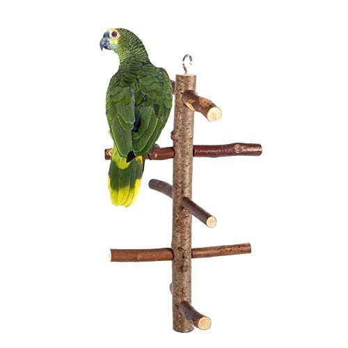 Yosoo Parrot Birds Perches Paw Grinding Toy Cage Stand Toy Hanging Wooden Activity Branches Climbing Stairs For Budgies Canaries Cockatiels Cockatoo Parakeet