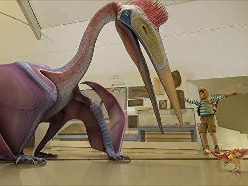 Fliegende Erwartungen / Dino-Talente
