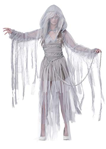 California Costumes Women's Haunting Beauty Ghost Spirit Costume, Gray, Small