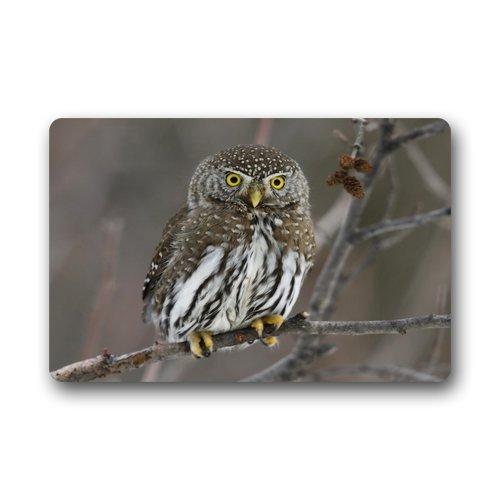 Doubee Paillasson Design Owl Premium Tapis Anti-Poussière passwort Jardin à la Maison en Plein air intérieur 46 cm x 76 cm, Tissu, E, 18\