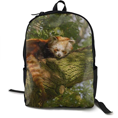 zhengchunleiX Travel Daypacks,Casual Rucksack,Sports Book Bags,Whipsnade Zoo Unique Mochila Durable Oxford Outdoor College Students Busines Laptop Computer Shoulder Bags