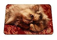 26cmx21cm マウスパッド (猫ふわふわうそ) パターンカスタムの マウスパッド
