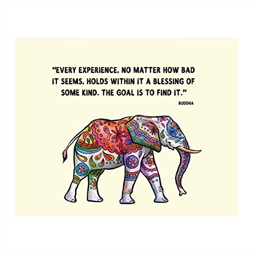Buddha Quotes & Color Elephant Art Print -'Every Experience is a Blessing'- 8 x 10 Art Wall Print Art Ready to Frame. Home Décor, Studio & Office Décor. Perfect Gift for Buddhism, Zen & Inspiration. c