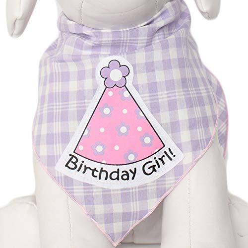 Tail Trends Happy Birthday Hunde-Halstuch für Mädchen und Jungen, Unisex, 100% Baumwolle, Medium, Partyhut für Mädchen