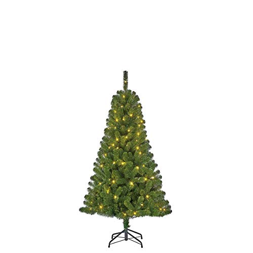 Black Box 215 cm Kunstkerstboom Charlton met verlichting 180 LEDs warm wit, takken 805, groen - dennenboom - kerstboom
