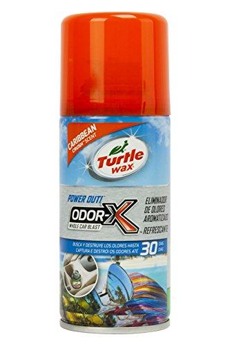 Turtle Wax TW53086 Limpiador Aire Acondicionado Aroma Caribe 100 ml. Destruye los olores en Tan Solo 10 Minutos. Limpiando Desde el sitema de ventilación del vehículo, U