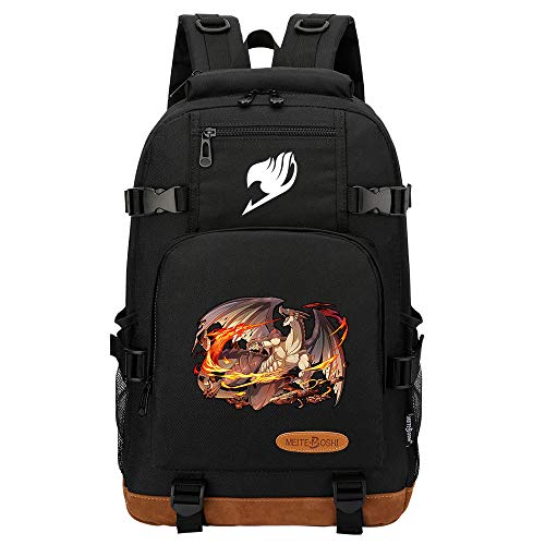 SHU-B Fairy Tail Laptop Backpack,Extra Large Anti-Theft Business Travel Laptop Backpack Bag with USB Charging Port