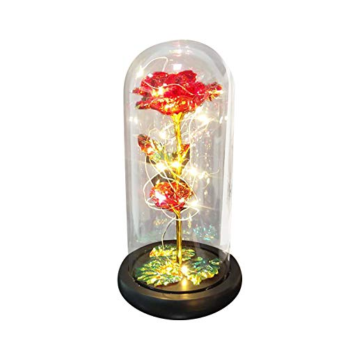 Mingbai Flower Roses Enchanted Colorful Rose, Saved in The Glass Dome, Light Up with Enchanted Petals, Mothers Day, Home Office Decorations, Birthday Party, Valentine's Day, Wedding Anniversary (E)