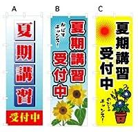夏期講習受付中 のぼり旗(日本ブイシーエス)V0049 (夏期講習受付中 V0049-B)