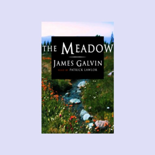 The Meadow audiobook cover art