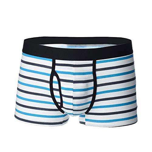 NEEKY Herren Boxershorts Herren Stripe Unterwäsche Soft Breathable Knickers Short Sexy Briefs(M,Hellblau)