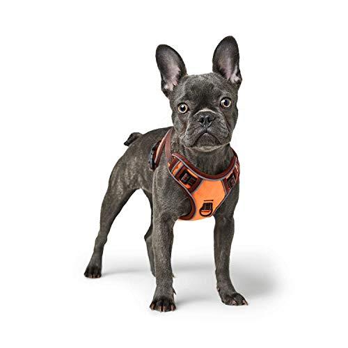 HEELE Hundegeschirr Grosse Mittelgroße Hunde Verstellbares Reflektierendes Hundegeschirr No Pull, Brustgeschirre für Hunde mit Post-Positiver D-Ringschnalle Orange M