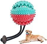 Hundeball Snackball aus Naturkautschuk Hunde Ball, Kauspielzeug Futterball mit Zahnpflege,...