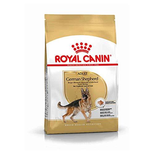 ROYAL CANIN 11 KG German Shepherd Adult hondenvoer