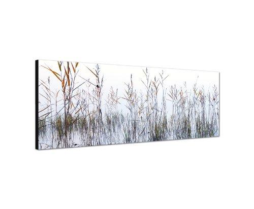 120x40 cm Panorama Wandbild Leinwand (Gras) Panoramabild Bild Bilder Moderne Dekoration zum kleinen Preis! Bild bespannt auf echter Leinwand und Holzkeilrahmen. Made in Germany neu