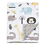 BORITAR Baby Blanket for Boys Girls Soft Minky with Double Layer Dotted Backing, Lovely Animals Printed 30 x 40 Inch Receiving Blanket