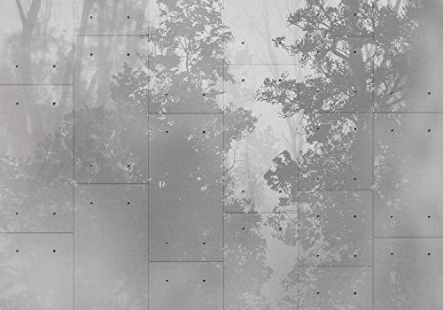 wandmotiv24 -   Fototapete