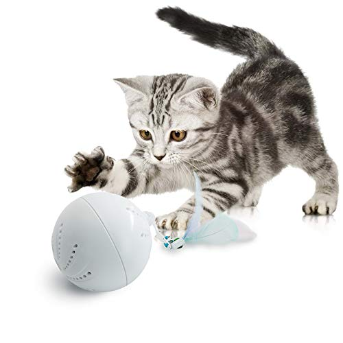 HIPIPET Interactive Cat Toys Ball with Feather Attachment&Bell Random Movement Build-in Spinning Led Light Stimulating Release Boredom for Indoor Cats Large Cats