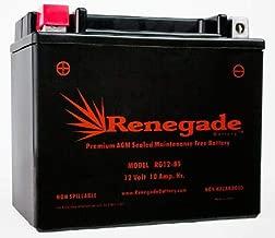 Best sc450rm1u battery replacement Reviews