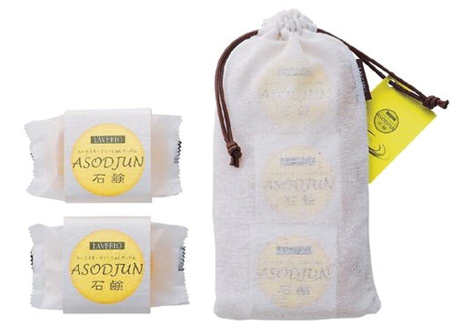 前書き抑止する南極高級透明石鹸 ASODJUN 石鹸(3個入り)