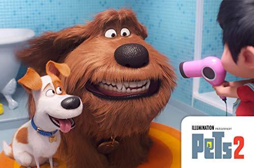 Pets 2 UHD [Blu-ray]