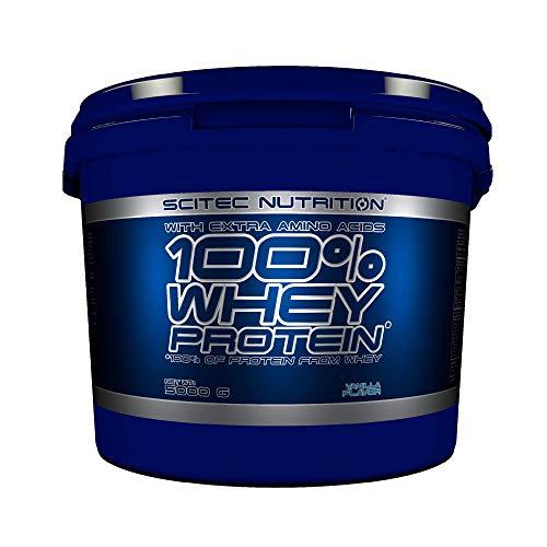 Scitec Nutrition 100% Whey Protein con aminoacidi extra, 5 kg, Vaniglia