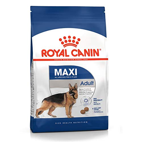 Royal Canin Maxi Adult - Pienso para perros raza grande 10Kg