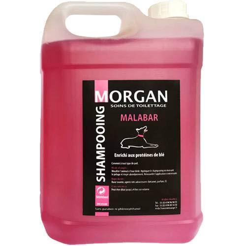 Morgan Shampoing Protéiné Malabar Volume 5 L pour Chien