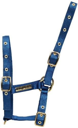 Cottage Craft - Collare per puledro, Blu (blu), Foal