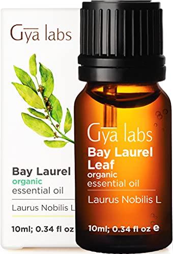 Gya Labs Aceite esencial orgánico de hoja de laurel de para el crecimiento del cabello, alivio del sueño, dolor muscular y cabello fino, 100 aceite puro de grado terapéutico para aromaterapia, 10 ml