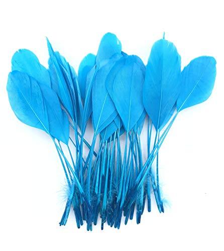 ERGEOB schwarz abgestreift Coque Schwanz Federn 10-15cm/4-6 Zoll Länge Basteln Material Kopfschmuck Brosche Material blau