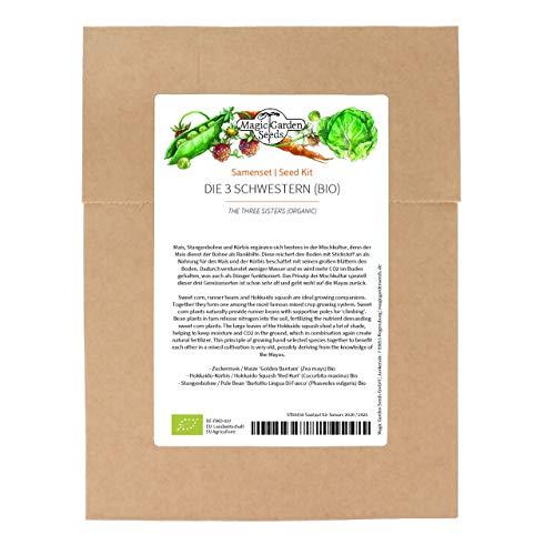 Las 3 hermanas (orgánicas) – Juego de semillas con maíz, granos y calabaza para un tradicional bancal Milpa de calidad ecológica, Set básico.