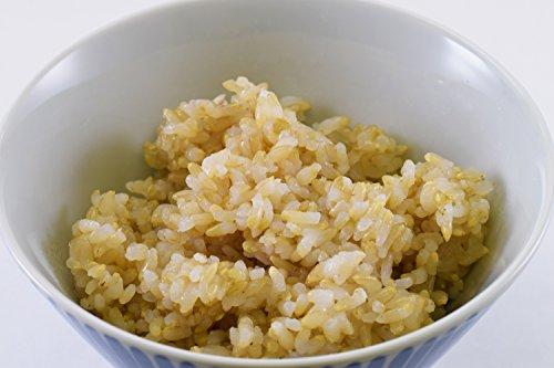 JA加美よつばラドファ『金のいぶき発芽玄米ごはん』