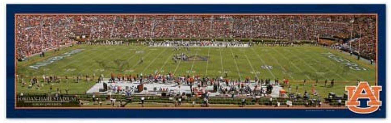 Wincraft NCAA Auburn University WCR37483013 Wood Sign, 9Inchx30Inch