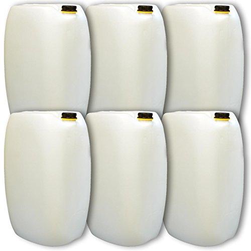 Wilai GmbH Lot de 6 bidons – Jerrican 60 L, Naturel, HDPE Ouverture DIN 61 qualité Alimentaire (6x22249)