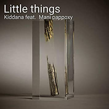 Little Things (feat. Mani Pappoxy) (Industrial)