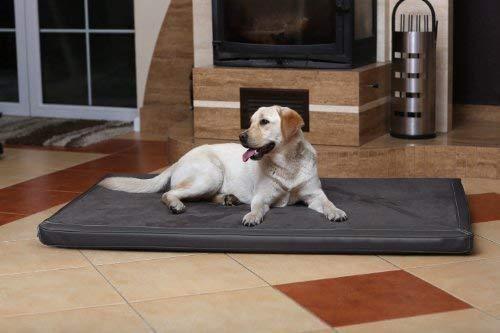 tierlando Carlos Ortho-Medic Orthopädische Hundematte Velours-Kunstleder VISCO Hundebett Größe: XXL - 150x100cm | Farbe: 02 Graphit