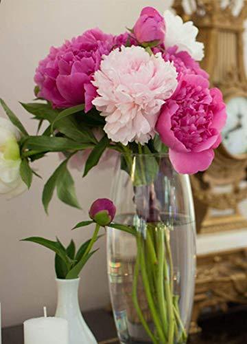 Maison Zoe Mundgeblasene und Handgefertigte Glasvase Amaryllis - Blumenvase - Deko & Hochzeit (26cm Slim)