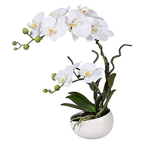 wohnfuehlidee Kunstpflanze Orchidee Phalenopsis, weiß, mit Deko-Keramik-Schale, Kunstblume Höhe 42 cm, Künstliche Orchidee im Topf